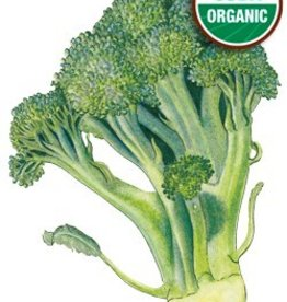 Botanical Interests Broccoli Di Cicco Org