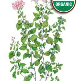 Botanical Interests Oregano Common Org