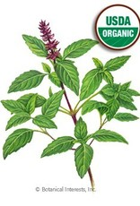Botanical Interests Basil Thai Sweet Thai Org