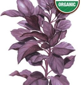 Botanical Interests Basil Purple Petra Org