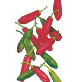 Botanical Interests Pepper Chile Serrano