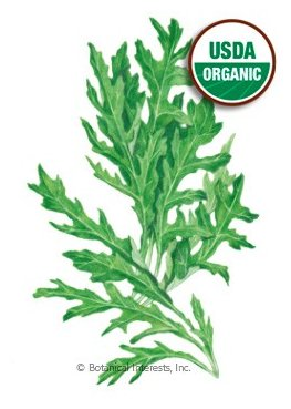 Botanical Interests Arugula Wild Rocky Salad Org