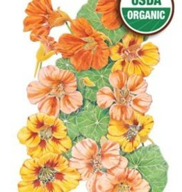 Botanical Interests Nasturtium Fiesta Blend Org