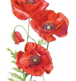 Botanical Interests Poppy Flanders American Legion