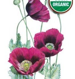 Botanical Interests Poppy Lauren's Grape Org