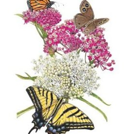 Botanical Interests Butterfly Flower Irresistible