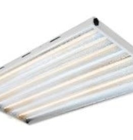 C.A.P. T5 Maxlume 2FT 8 Tube Fixture w/Grow Bulbs