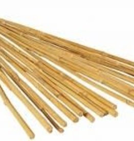 Hydrofarm Hydrofarm 4' Bamboo Stakes, Natural, pack of 25