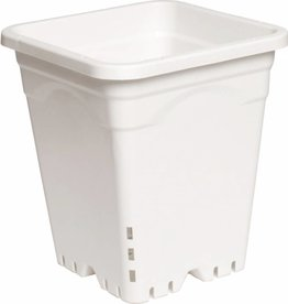 "Active Aqua Active Aqua Square White Pot 10"" Tall, 9"" x 9"" Per Unit"