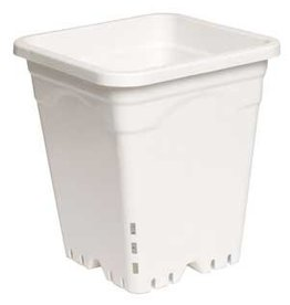 "Active Aqua Active Aqua 12"" x 12"" Square White Pot, 12"" Tall, UNIT"