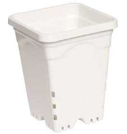 "Active Aqua Active Aqua Square White Pot 8"" Tall, 6"" x 6"" Per Unit"