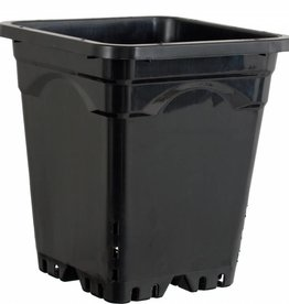 "Active Aqua Active Aqua Square Black Pot 12"" Tall,  12"" x 12""  UNIT"