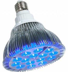 PowerPAR powerPAR LED Bulb - Blue 15W/E27