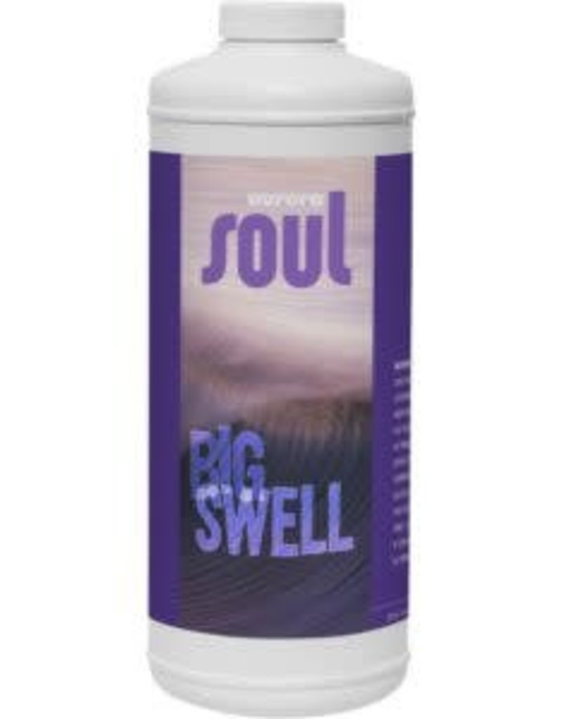 Aurora Soul Big Swell Cup