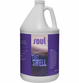 Aurora Soul Big Swell, 1 gal
