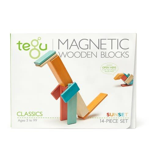 Tegu Tegu Magnetic Blocks 14 Piece Set