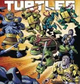 IDW PUBLISHING TALES OF TMNT OMNIBUS TP VOL 01