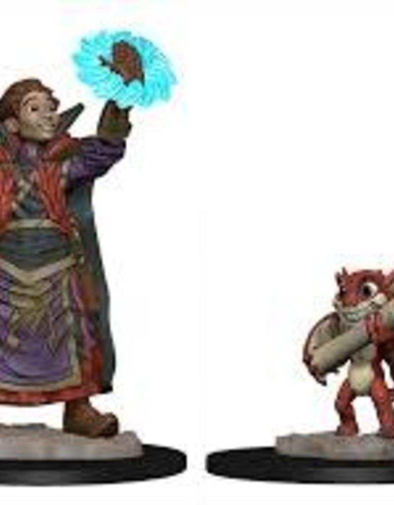 WIZKIDS D&D NOLZUR'S MARVELOUS WARDLINGS BOY WIZARD & IMP PAINTED MINI