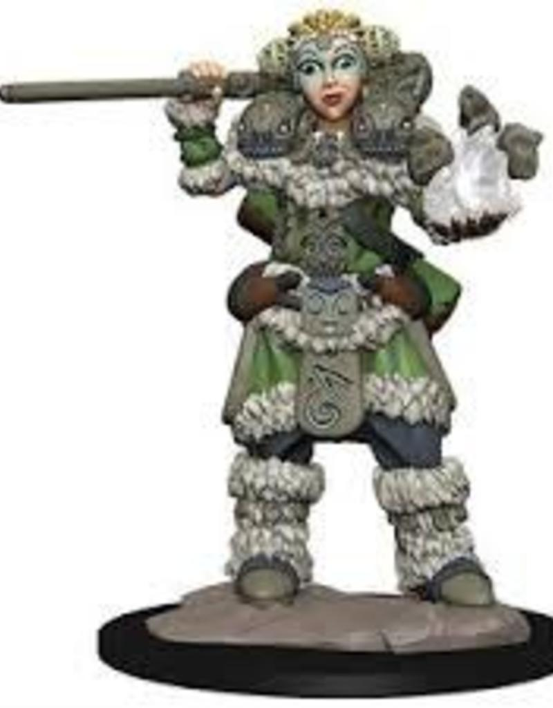 WIZKIDS D&D NOLZUR'S MARVELOUS WARDLINGS GIRL DRUID & STONE CREATURE PAINTED MINI