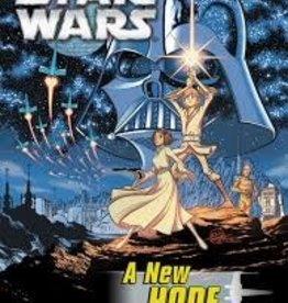 IDW PUBLISHING STAR WARS NEW HOPE GN