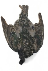 Fish Hunter Starling Skin