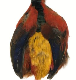 Fish Hunter Golden Pheasant Skin - No Head or Tail