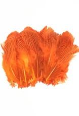 Hareline Dubbin Silver Pheasant Body Feathers, Strung -