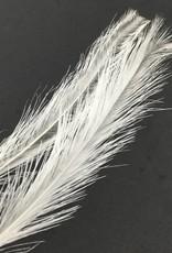 Fish Hunter Rhea Tail Plumes -