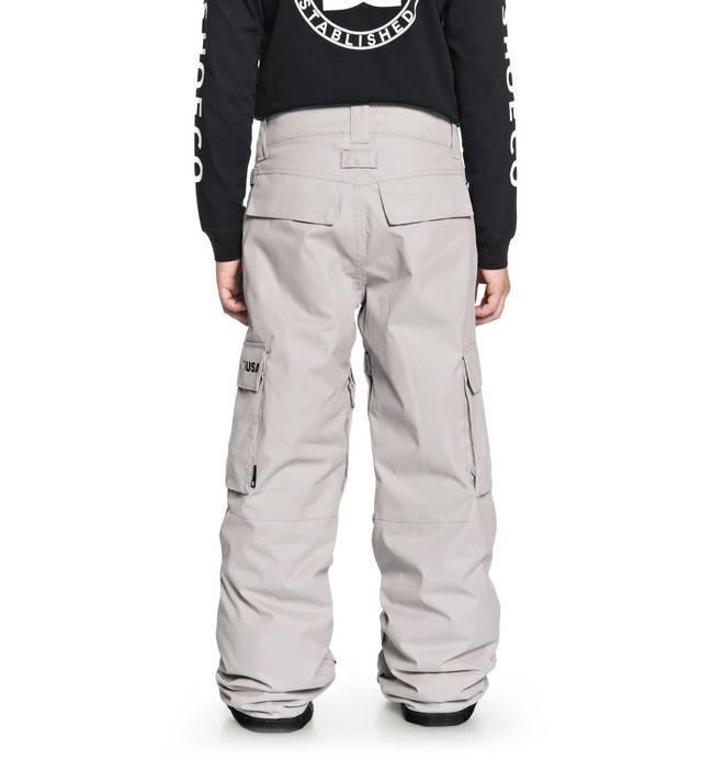 DC Shoes 2018/19 DC Youth Boys' Banshee Snow Pants | Canada