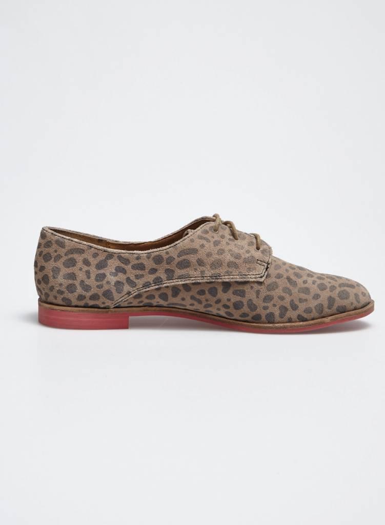 Dolce Vita Chaussures en cuir effet léopard