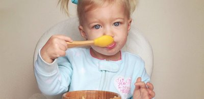 Food Rules According to a Toddler