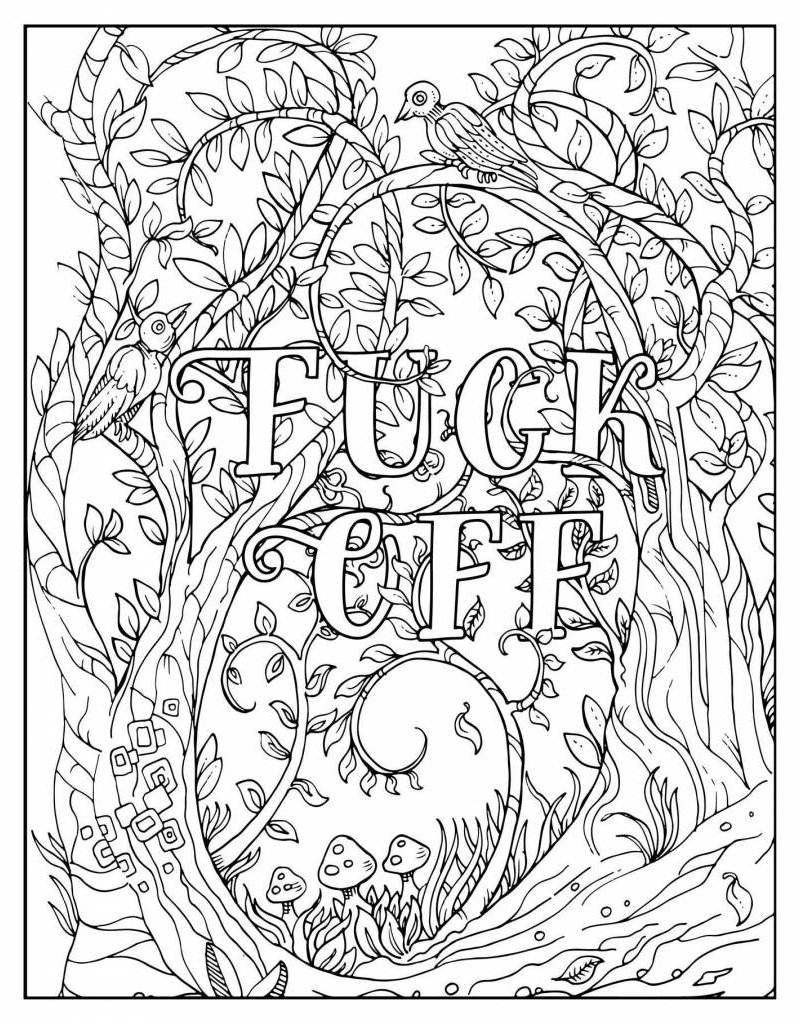 Simon and Schuster F*ck Off, I'm Coloring