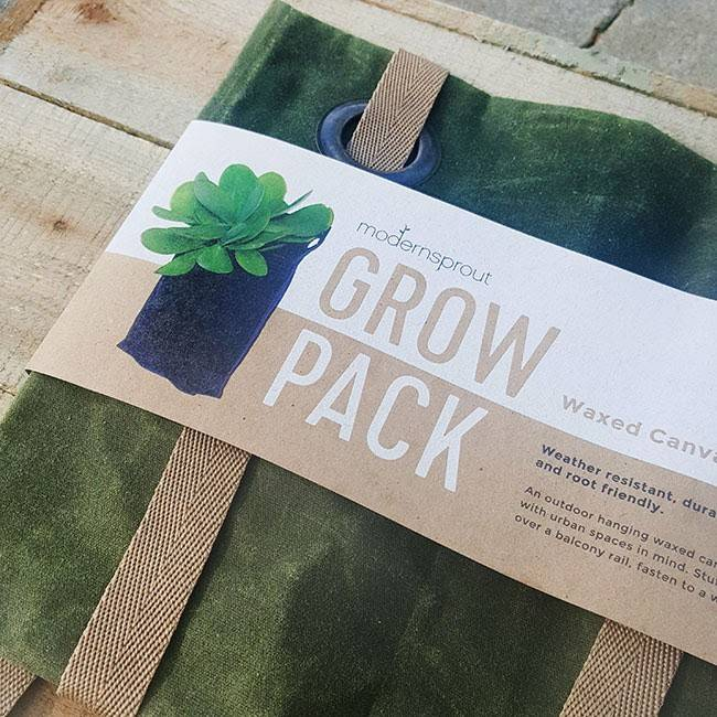 Modern Sprout GrowPack-Forest