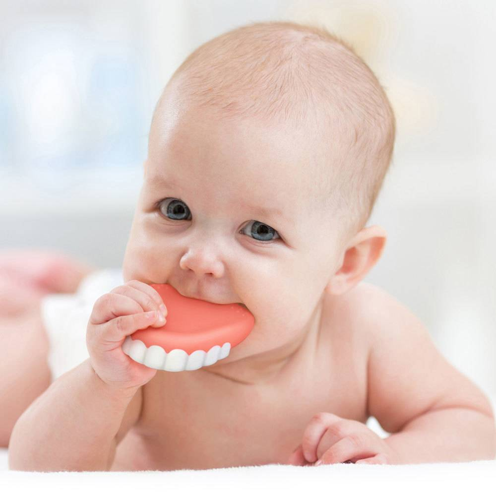 Fred & Friends False Teether