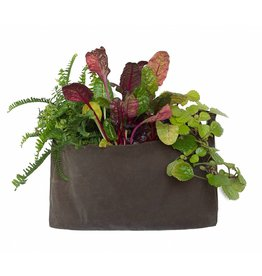 Modern Sprout GrowPack-Clay