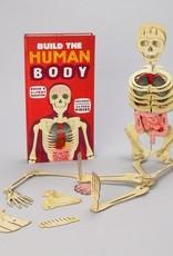 Ingram Publisher Build The Human Body