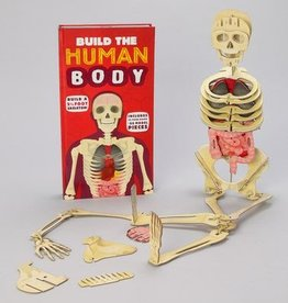 Ingram Publisher Build The Human Body