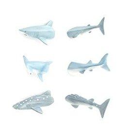 Kikkerland Shark Butt Magnets