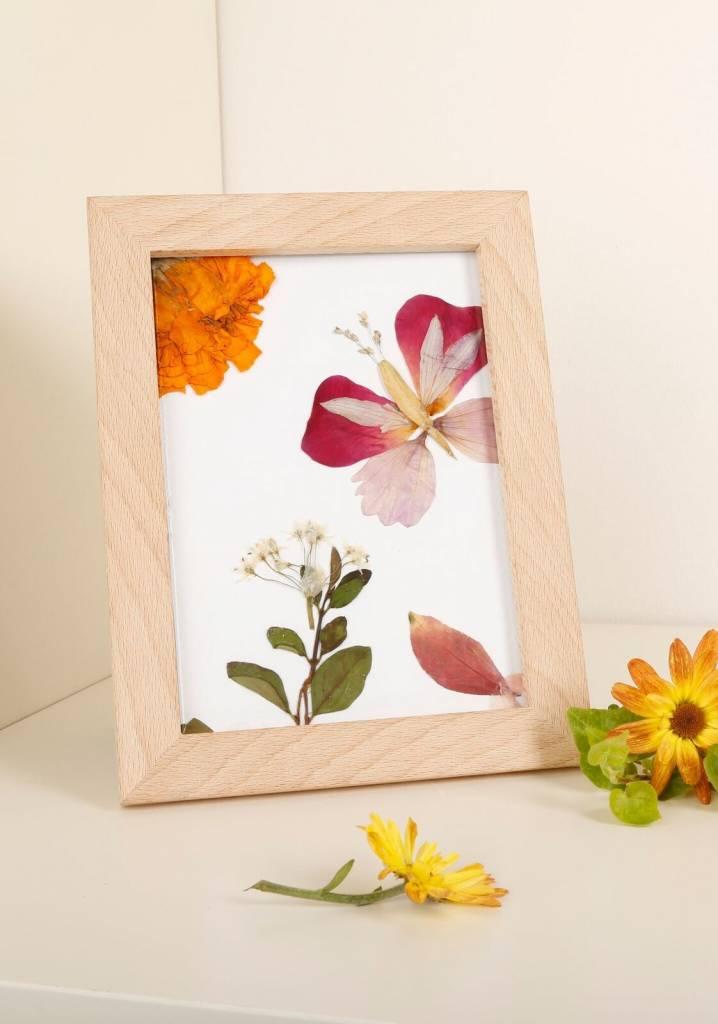 Pressed Flower Frame Display - Exit9 Gift Emporium