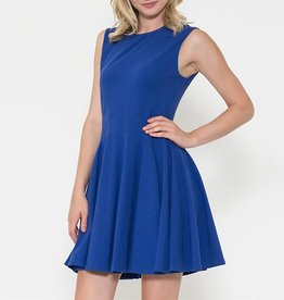 Esley Sleeveless Knit Fit & Flare Dress