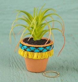Natural Life Yellow Fringe Mini Succulent