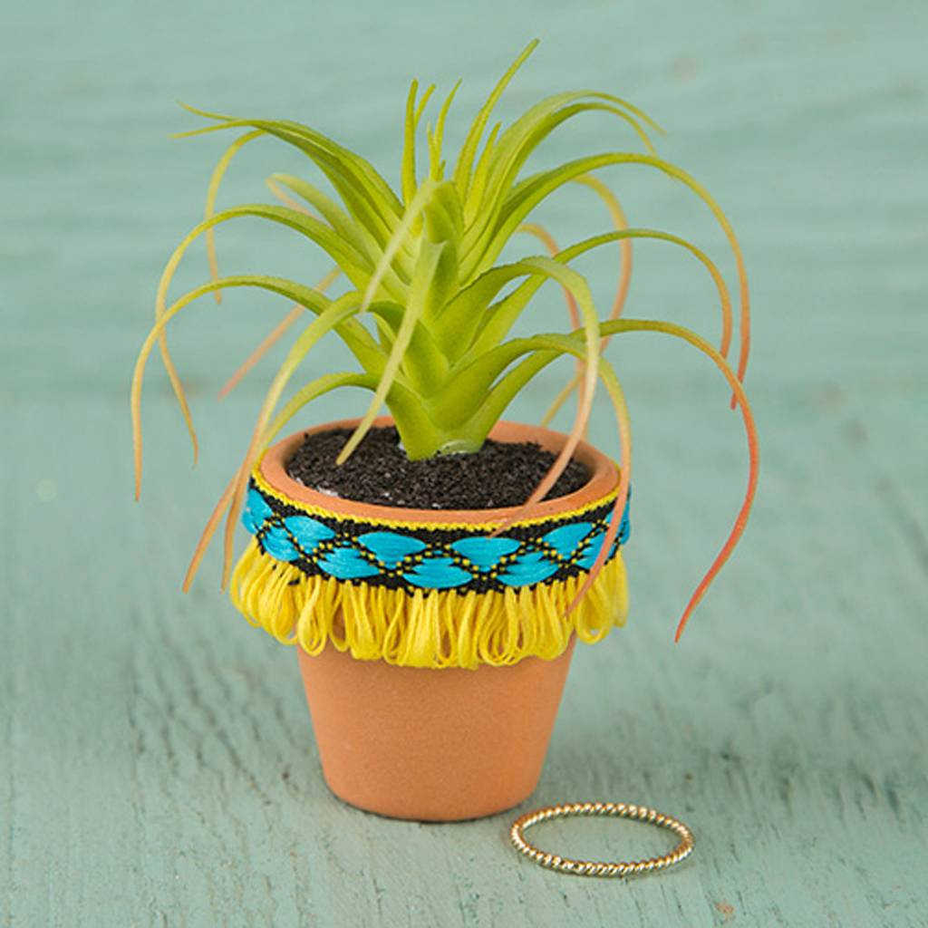 Natural Life Yellow Fringe Mini Succulent
