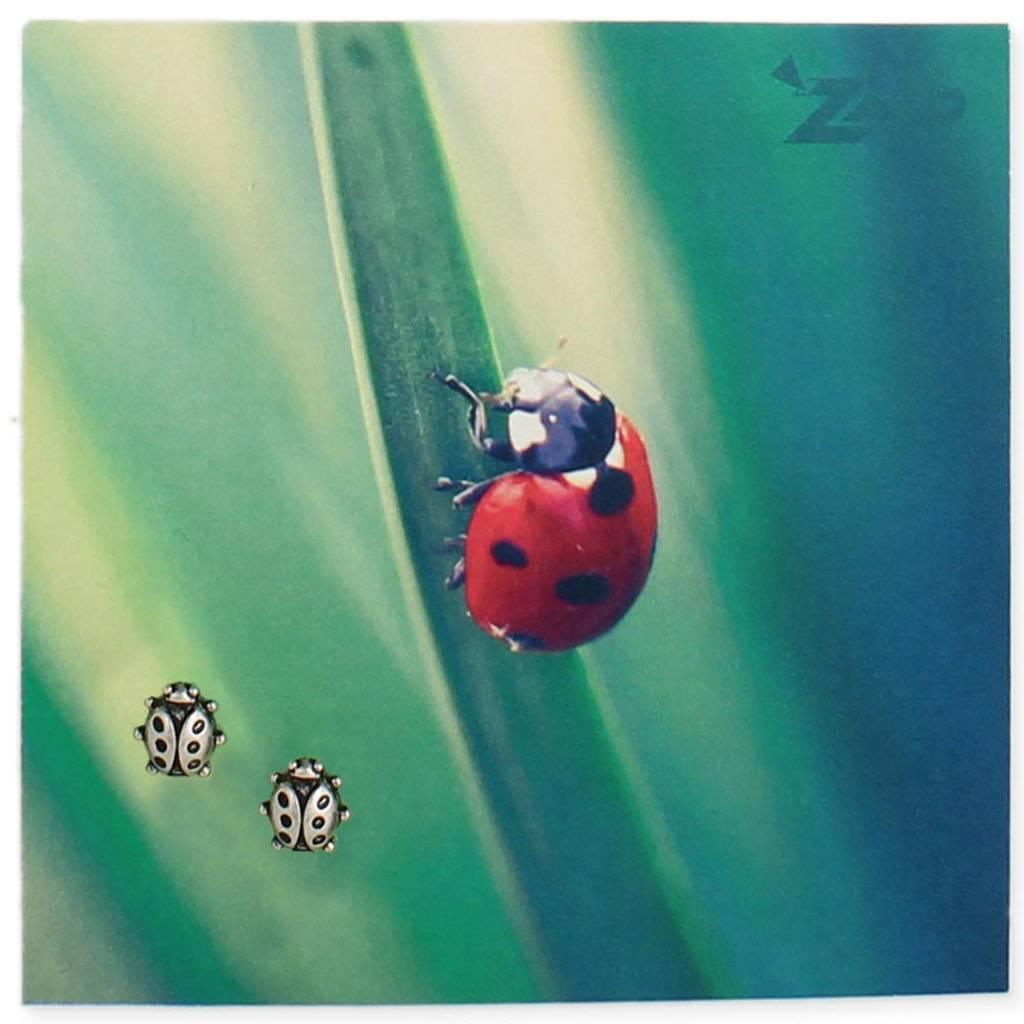 ZAD Ladybug Post Earrings