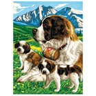 KSG Limited . KSG JUNIOR PBN ST BERNARDS