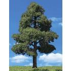 """Woodland Scenics . WOO SUN KISSED TREES 7""""""""- 8"""""""" (2)"""