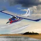 Nice Sky Airplane . NSY DHC-BEAVER W/FLOATS SET SLT