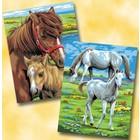 KSG Limited . KSG JNR PRS PAINT BY #'S HORSES