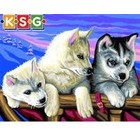 KSG Limited . KSG HUSKIES SEN. PAINT BY #
