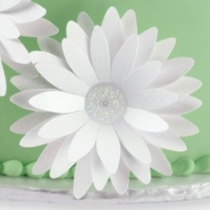 Wilton Products . WIL PAPER FLOWER DAISY PIX