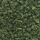 Woodland Scenics . WOO BLENDED TURF GREEN 32oz
